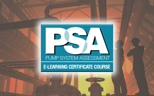 Hydraulic Institute Pump System Assessment Certification Program