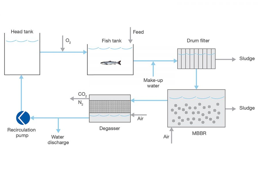 Sulzer Water treatment system process chart smolt facility