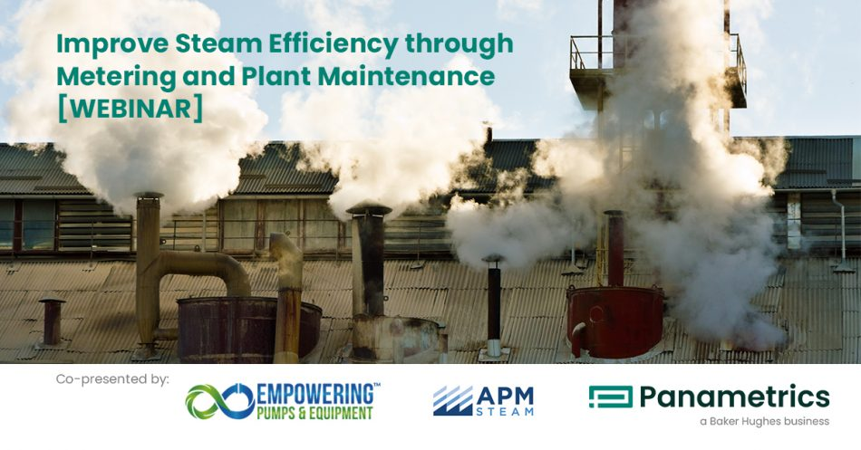 panametrics-Dec9-20-webinar-graphic-revised maintenance and metering