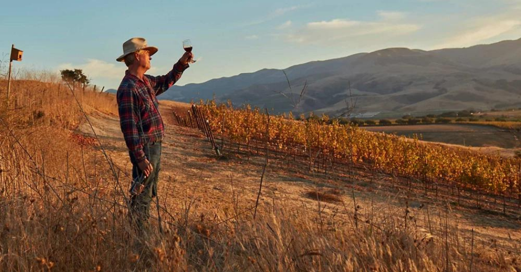 Grundfos Peter Work checks the colour in a pinot noir from his vineyard during autumn in the Santa Rita hills of California.